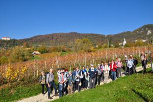 Med vinogradi v Orešju
